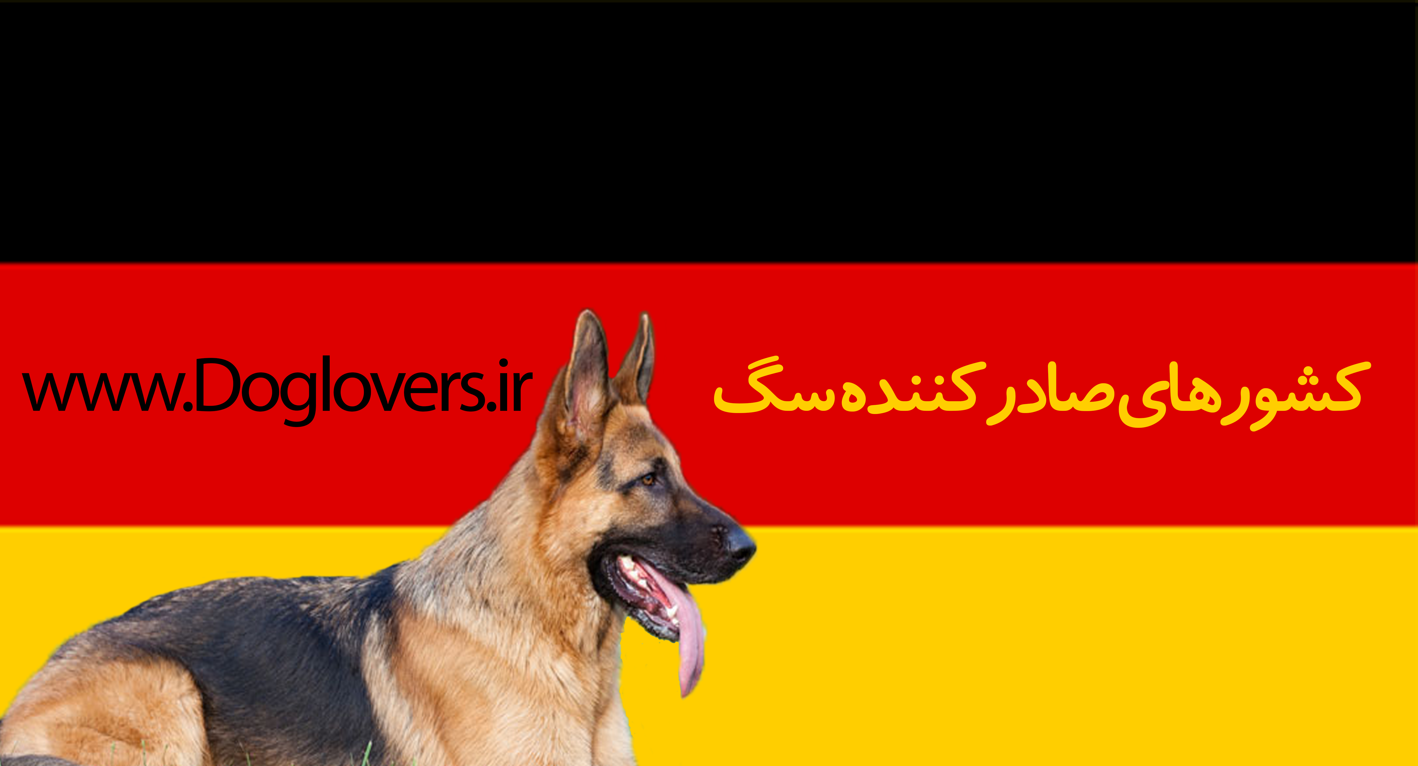 کشوزهای واردات سگ