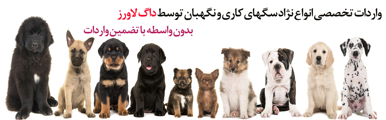 واردات تخصصی انواع نژاد سگ